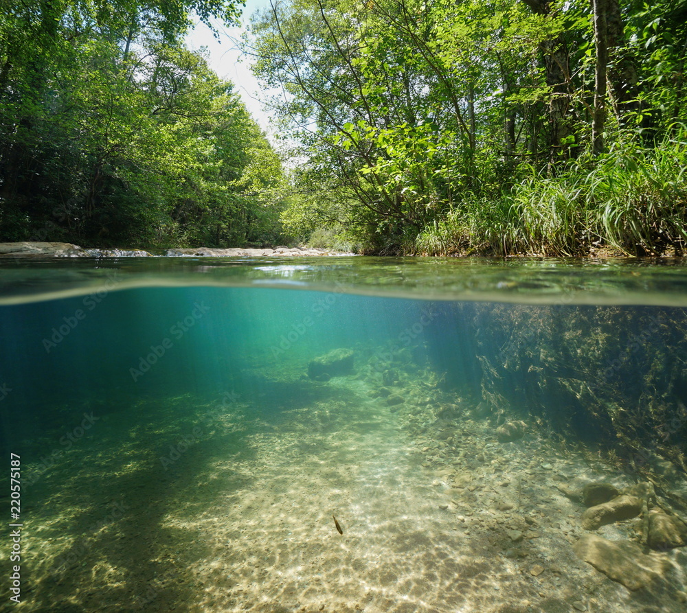 Wild river with green vegetation on the riverbanks, split view over and under water, La Muga, Girona, Alt Emporda, Catalonia, Spain