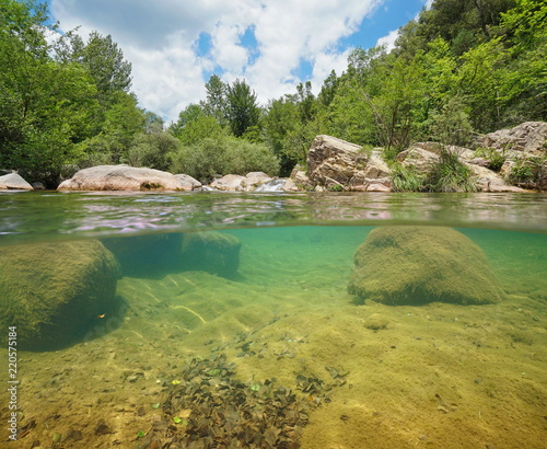 Foto auf Gartenposter Fluss Wild river with green vegetation and rocks over and underwater, split view above and below water surface, La Muga, Girona, Alt Emporda, Catalonia, Spain