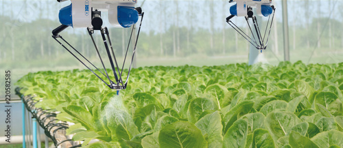 Fototapeta smart robotic in agriculture futuristic concept, robot farmers (automation) must be programmed to work to spray chemical,fertilizer or increase efficiency, growing a seed, harvesting, reduce time obraz