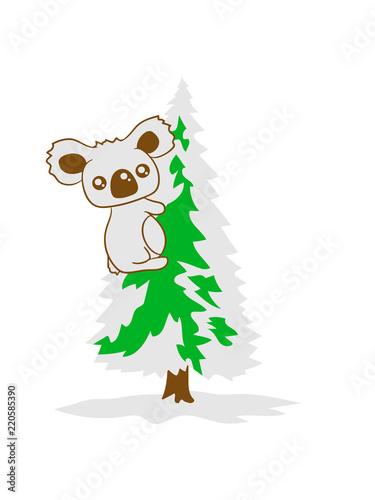 Weihnachtsbaum Weihnachten.Koala Klettern Bär Australien Weiß Grün Weihnachtsbaum Weihnachten