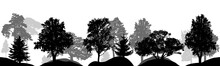 Set Of Trees, Silhouettes Isol...