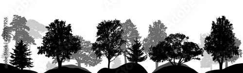 Vászonkép  Set of trees, silhouettes isolated, vector