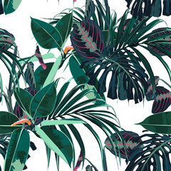 Fototapeta Do jadalni Beautiful seamless floral pattern background with tropical dark jungle plants. Perfect for wallpapers, web page backgrounds, surface textures, textile. White background.