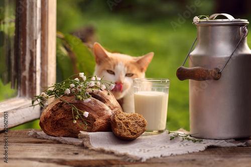 Fotografía  булка черного хлеба и молоко  на подоконнике