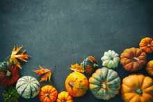 Thanksgiving Background With Various Pumpkins, Gourds And Falling Leaves