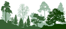 Forest Green Trees Silhouette....