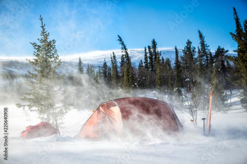 Garden Poster Camping bei Schneesturm im Winter in Lappland