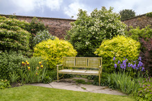 Three Seater Wooden Bench In Summer Garden Full Of Flowering Plants And Shrubs.