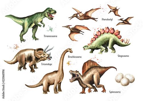 Dinosaur set Canvas Print