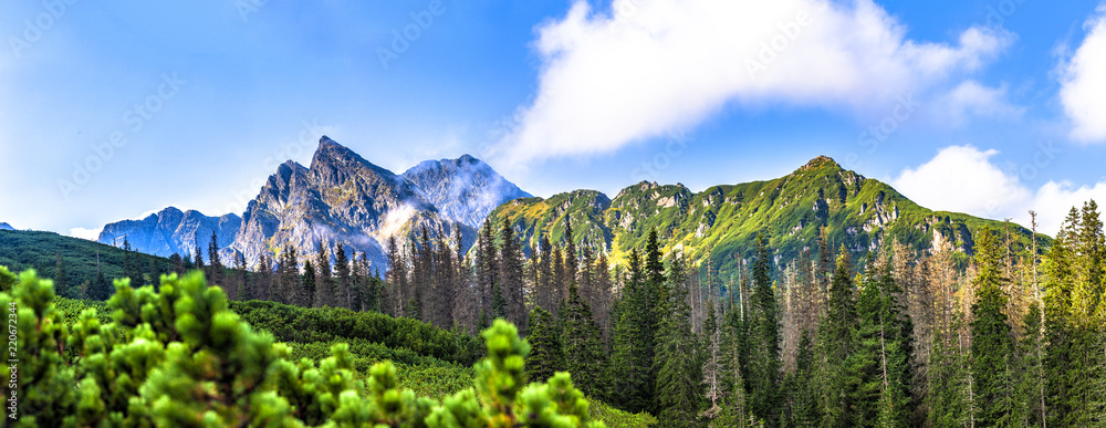 Fototapety, obrazy: Polish Tatra mountains summer landscape with blue sky and white clouds. Panoramic HDR montage