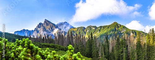 Fototapeta Polish Tatra mountains summer landscape with blue sky and white clouds. Panoramic HDR montage obraz