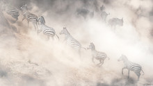 Dramatic Dusty Great Migration...