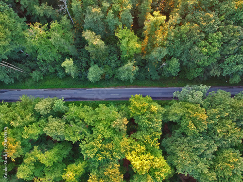 Foto op Aluminium Luchtfoto Aerial view on asphalt road hidden in green forest.