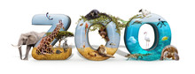 Zoo 3D Word And Animal Composite