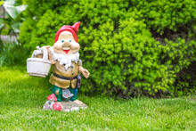 Garden Dwarf In Home Garden, Gnome Decoration