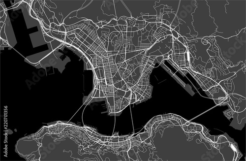 Fototapeta map of the city of Hong Kong, Special Administrative Region of the People's Repu