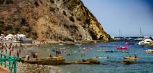 Catalina Island 2018 – Catal...