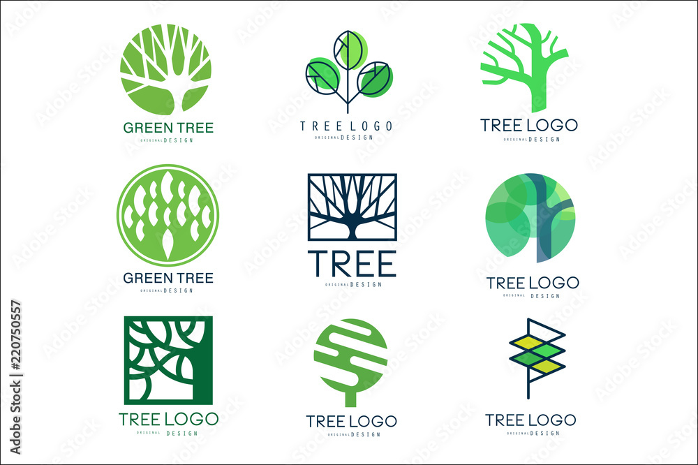 Fototapeta Green tree logo original design set of vector Illustrations in green colors