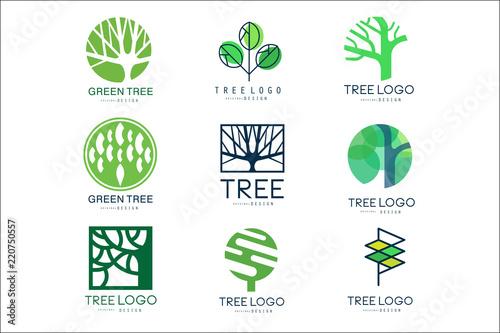 Fototapeta premium Oryginalne logo zielone drzewo zestaw wektora Ilustracje w zielonych kolorach