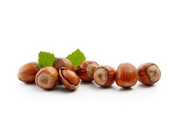 Freshly picked hazelnuts