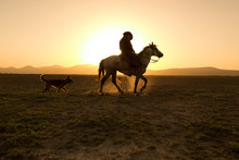 Horses, Cowboys, Dogs At Sunset