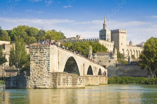 Avignon city with the ancient broken medieval bridge of Saint Benezet Canvas Print
