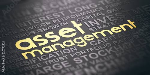 Asset Management Background, Words Cloud Concept In Black and Gold Tones Canvas Print