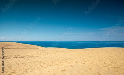 Poster Tropical plage dune