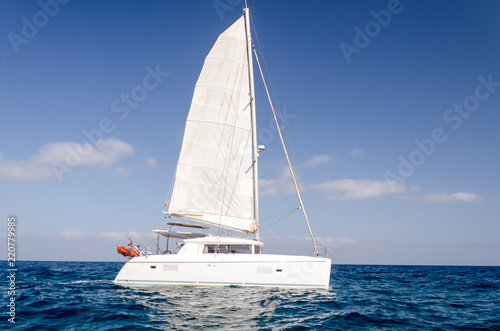 ocean landscape. Catamaran sail in the ocean