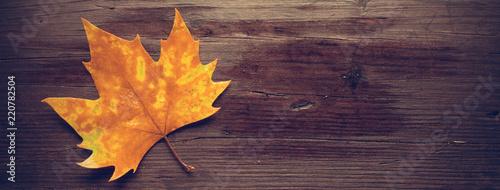 Fototapeta Dead leaves on wooden bench
