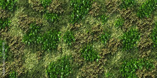 Fotografía big vertical garden plant wall