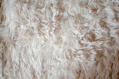 flur carpet background