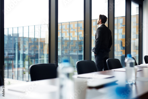 Fotografie, Tablou Back view portrait of successful businessman standing by window and looking outs