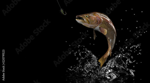 Poster Peche Rainbow trout fish trying to grap fishing lure