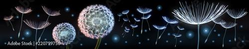 Obraz Pusteblumen und Glühwürmchen - fototapety do salonu
