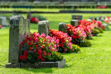 Row Of Grave Stones With Red A...