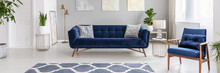 Real Photo Of A Modern Living Room Interior With A Blue Sofa, Armchair, Plants And Patterned Rug