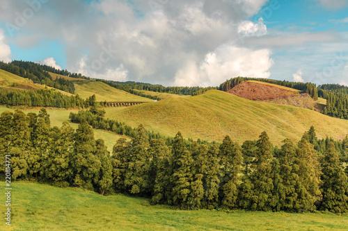 Foto op Canvas Pistache Wonderful hills and fields landscape in Sao Miguel, Azores Islands