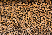 Freshly Cut Tree Logs Piled Up In Greece