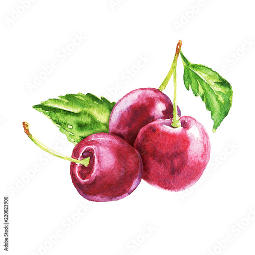 Leinwand Poster Hand drawn watercolor cherry bunch, food composition with green leaves isolated on white background