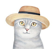 Portrait Of Cute Gray Pet Kitty Character Wearing Yellow Straw Hat With Black Ribbon. Beautiful Orange Eyes, Happy Cheerful Face, Front View. Hand Drawn Watercolour Graphic Painting, Isolated Art.