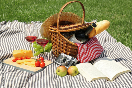 Basket with food and book on blanket in park. Summer picnic