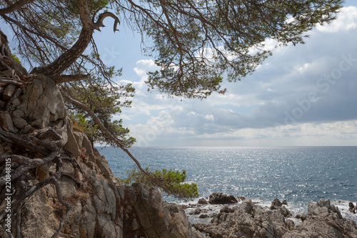 Seascape bay lagoon with mountains