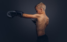Shirtless Boy Boxer With Blonde Hair Wearing Boxing Gloves Workout In A Studio.
