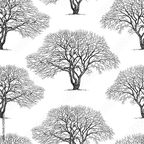fototapeta na lodówkę Seamless background of trees silhouettes