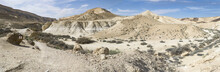 Panorama Of Nahal Wadi Zin And Nahal Wadi Havarim Joining At The End Of The Ein Avdat Canyon In The Negev Highlands Near Sde Boker In Israel