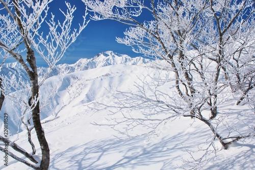 Fotografía  Hakuba / Nagano  ~  winter season