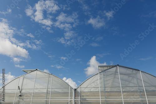 Photo closeup of modern greenhouse complex against blue sky