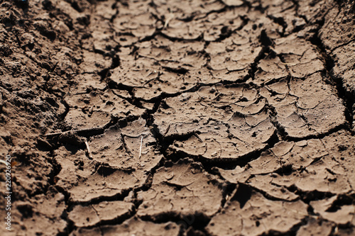 Foto  Surface of cracked ground in drought, perspective view, close-up macro