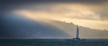 Sausalito Catamaran